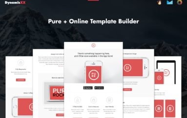 Pure+Responsive Email Template+online Builder Dynamicxx